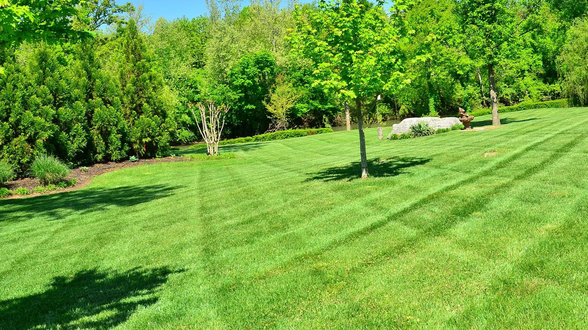 Lawn mowed with striping in Lexington, KY.