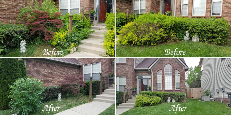 Another before and after shot of a yard clean up in Allen's Lawn Service.